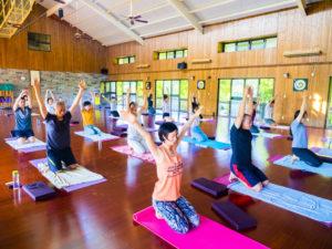 Students are doing yoga asana